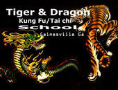 Tiger & Dragon Kung Fu School