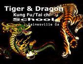 Tiger & Dragon Kung Fu School