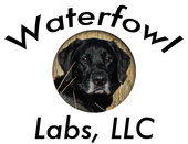 Waterfowl Labs