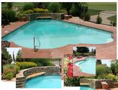 Contemporary Pools Construction